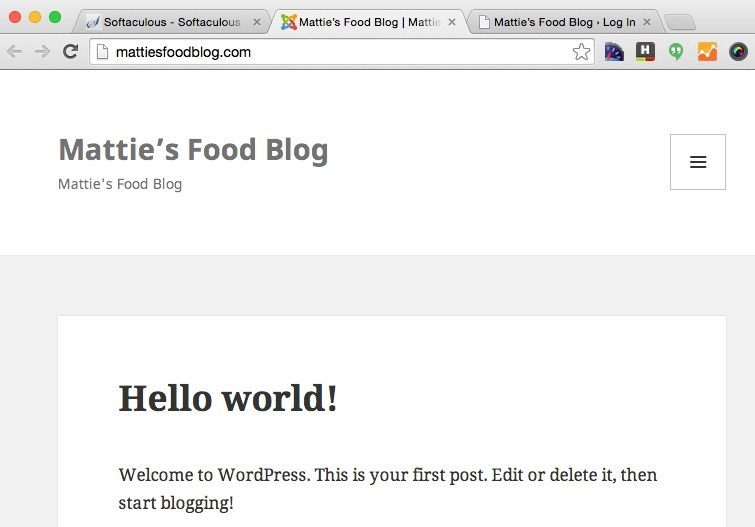 How to start a food blog - WordPress url